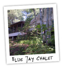 Blue Jay Chalet on Clear Lake