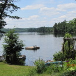Cottage comes with rowboat and canoe. Propane BBQ. Lots of nice spots for swimming along the shore.