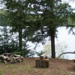 Lakeside fire pit. 2 picnic tables on property.