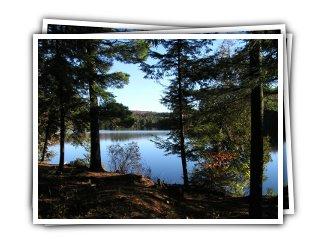 Lynne's Hideaway - Lake View
