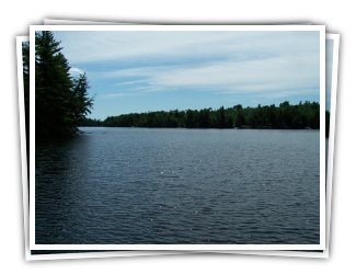 Rooster Retreat on Redstone Lake - Haliburton Highlands