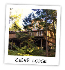 Cedar Lodge on Kennisis Lake - Haliburton Highlands